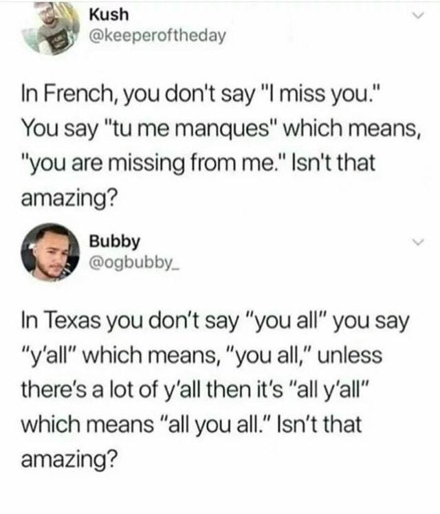 French is amazing. Texas too - meme