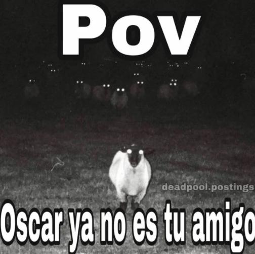 Oscar - meme