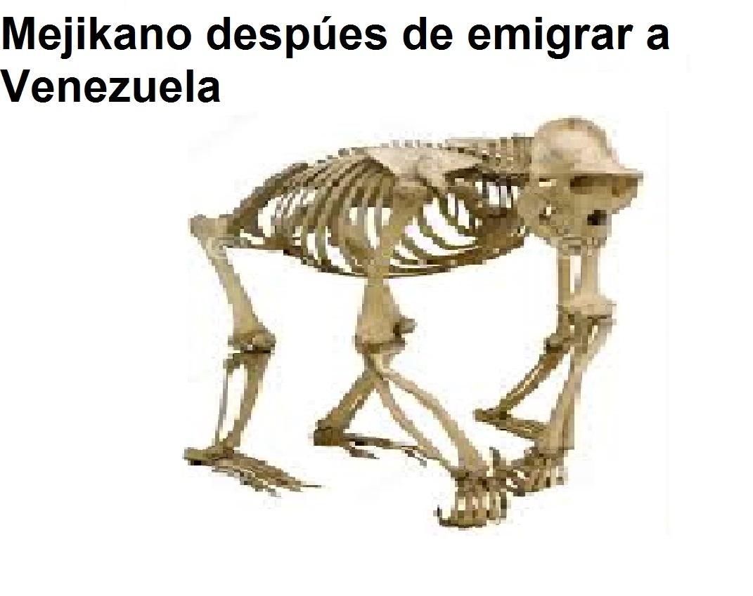 MejikANO venezolANO - meme