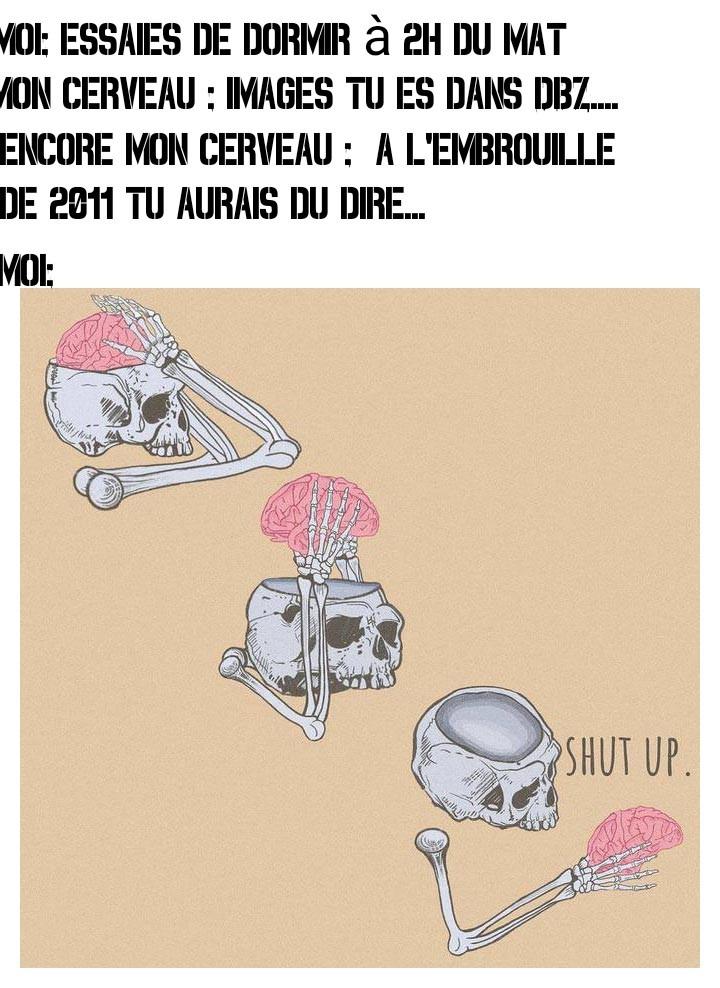 Put*n d'insomnie - meme