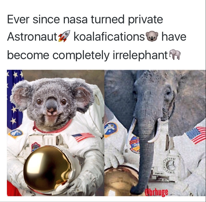 Irrelephant Astronaut Koalafications - meme