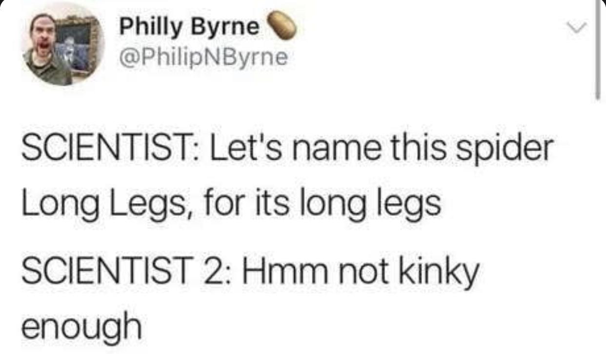 Mmm kinky - meme