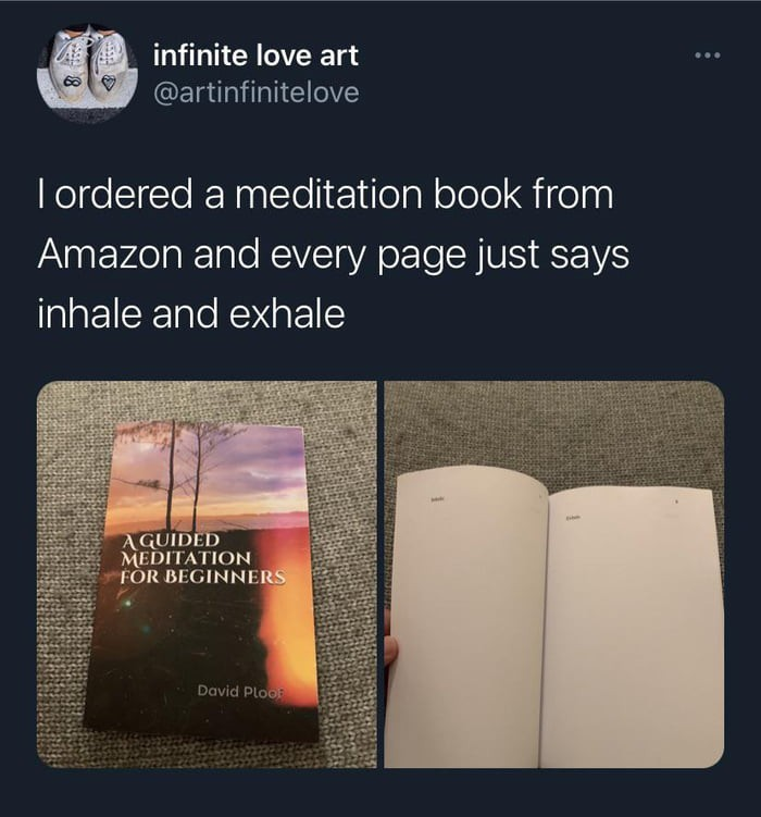 we'll that's how you meditate - meme