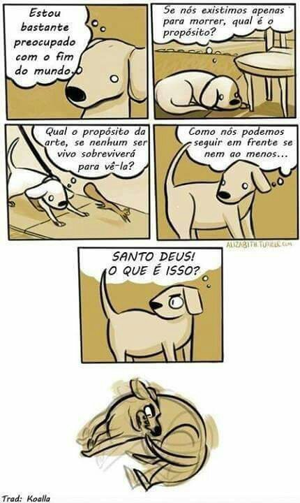Logica canina - meme