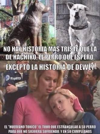 Pobre Dewey - meme