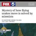 Jumanji rolled snakes