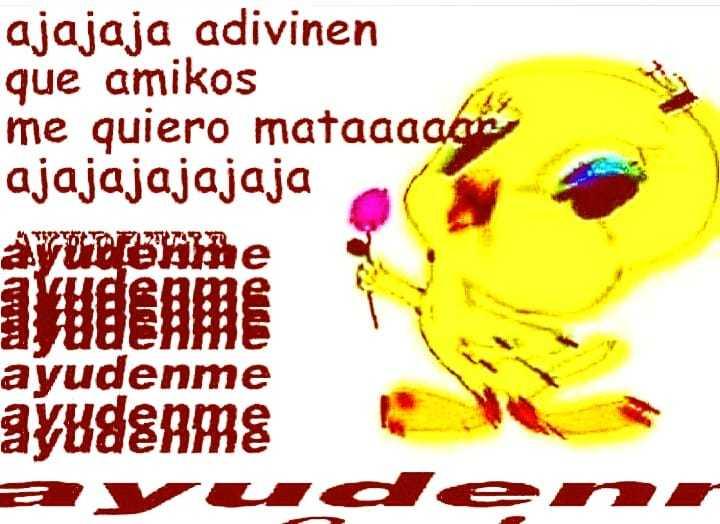 PiolinPosting6 - meme