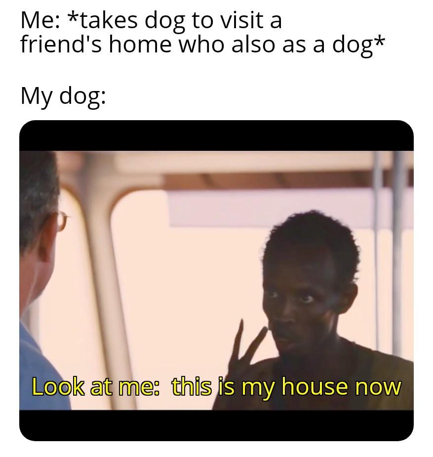 Visiting - meme