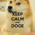doge keeps goin out and run, pls fllow his rules