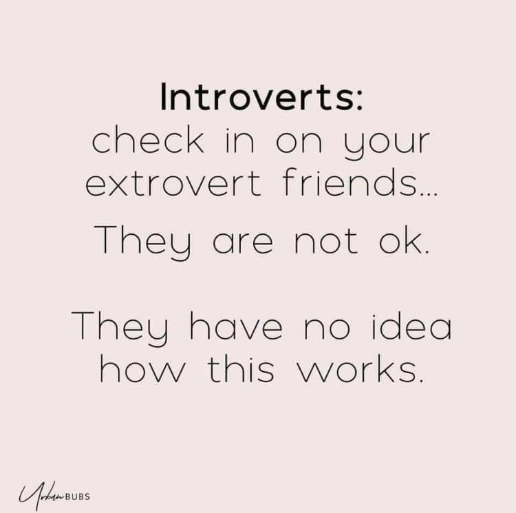 Introverts vs extroverts - meme