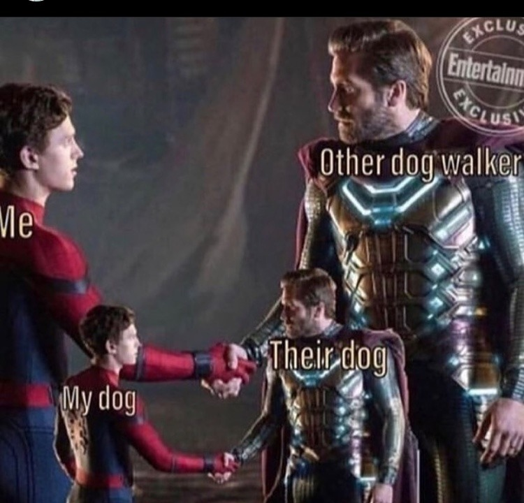 hello I am dog - meme