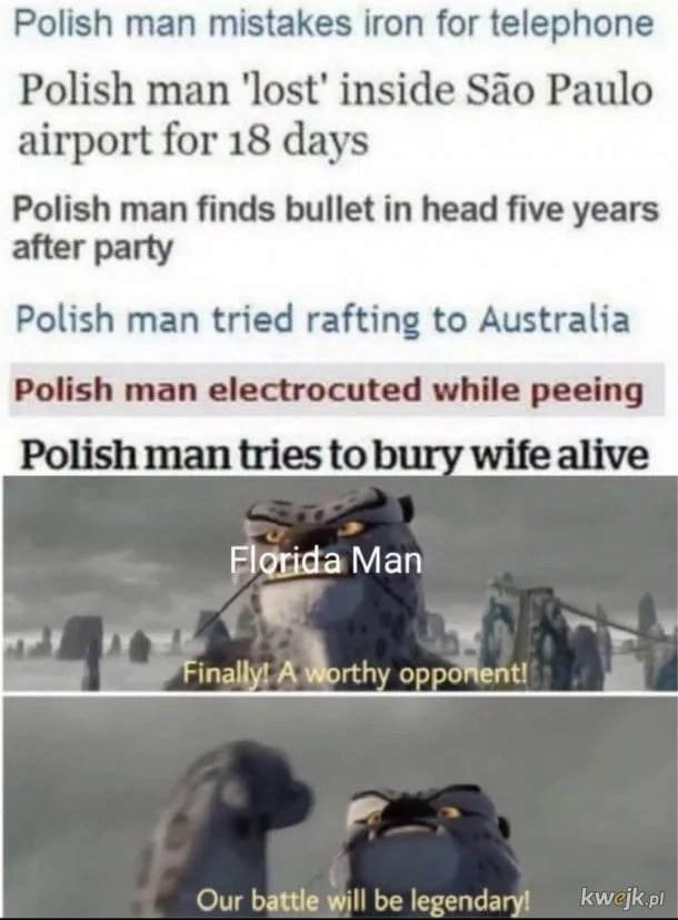 Polish will be challenged - meme
