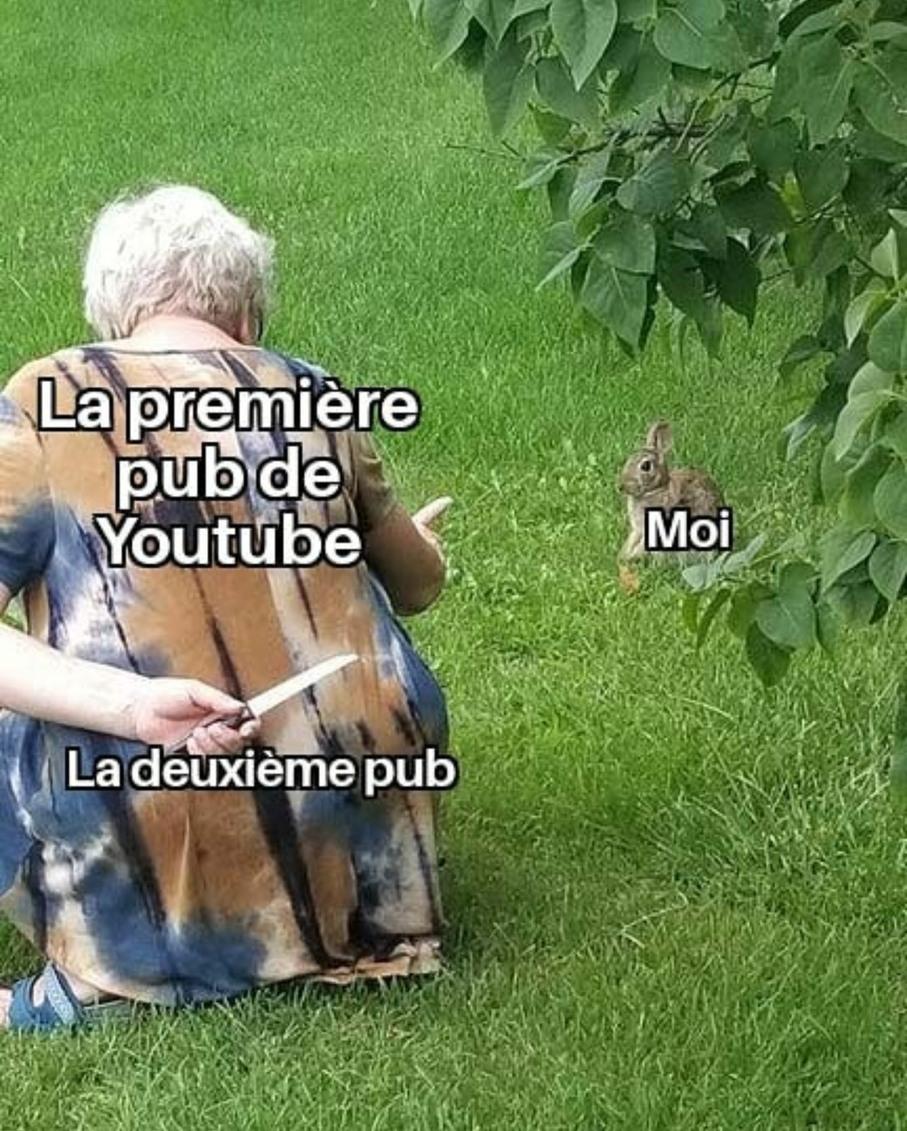 Bientôt t'auras plus de temps de pubs que de vidéo - meme