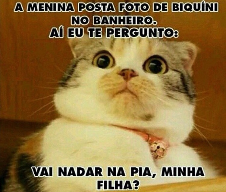 Segue no Insta: @riacomnois - meme