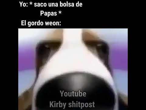 gordo weon - meme