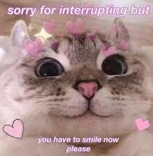 Please smile (please pass its kingray btw aka lily) - meme