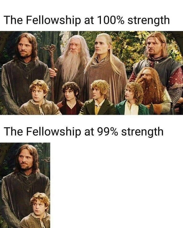 The Fellowship of the Ring - meme
