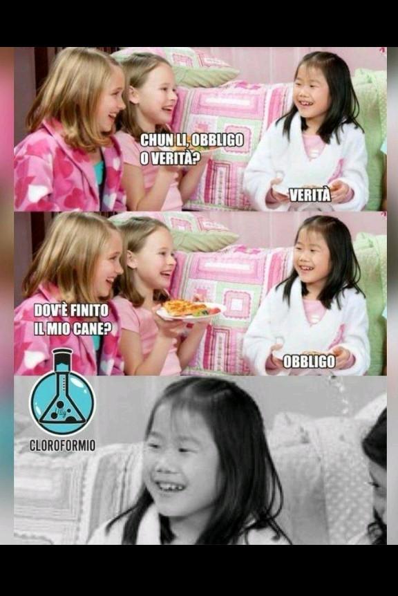 La verità sui cinesi - meme