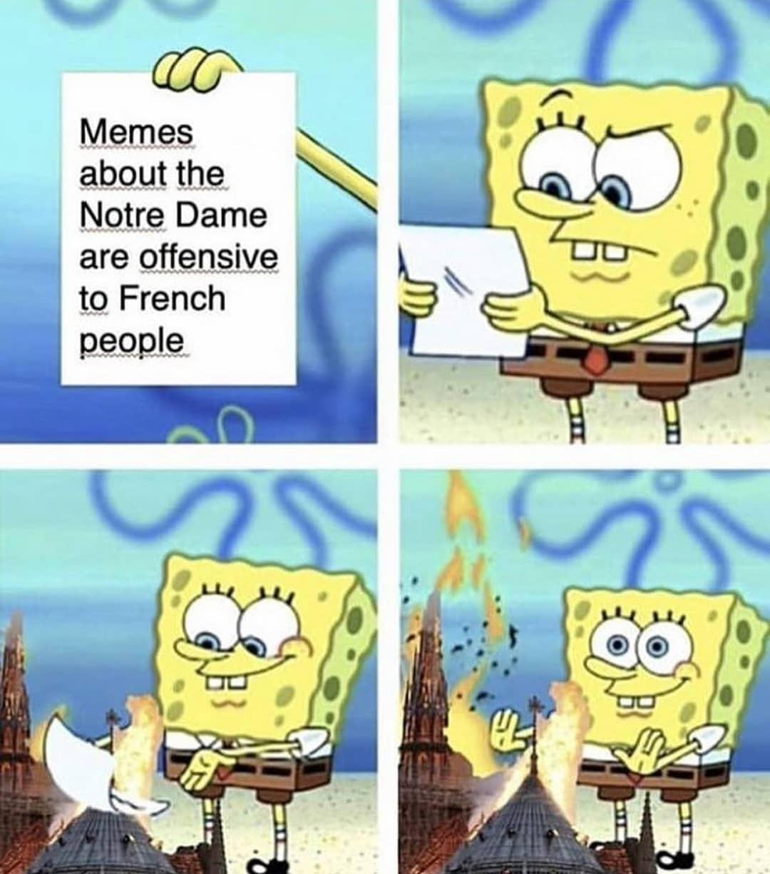 Notre Dame meme