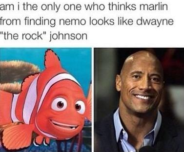 finding rocky - meme