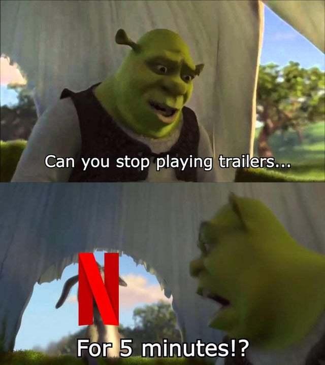 Fucking Netflix trailers - meme