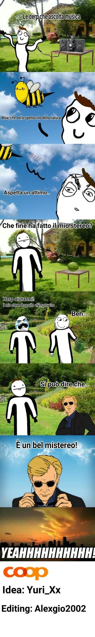 Horatio il giardiniere [C. Tutti quelli che hanno perso uno stereo] - meme