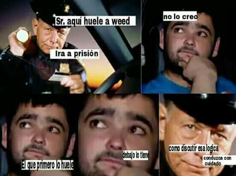Aqui huele a weed - meme