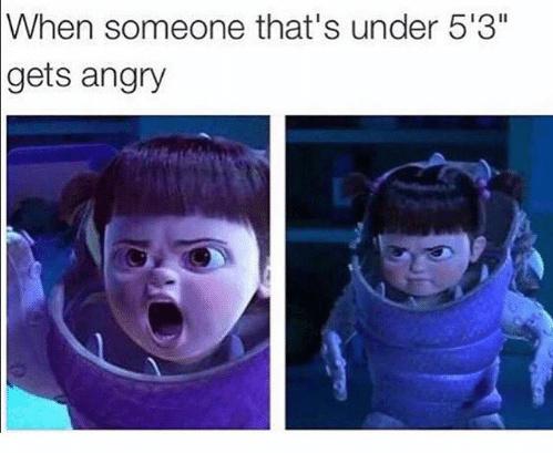 4'11 - meme