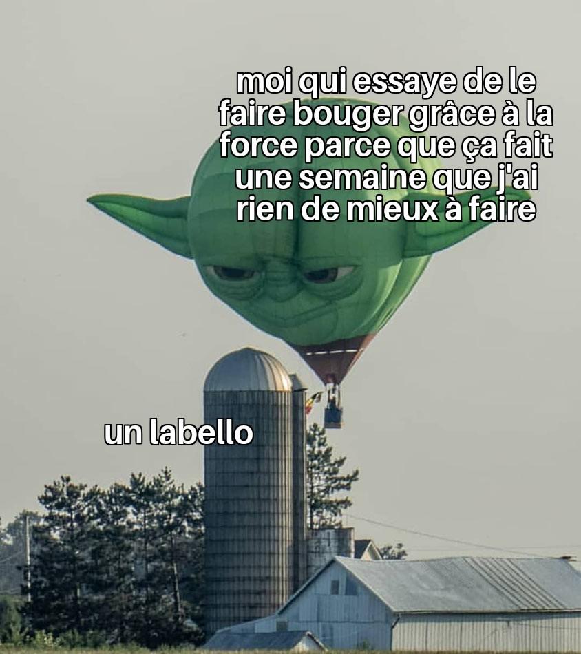 Utilise la fofofoforce - meme