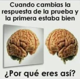 Pinshi cerebro - meme