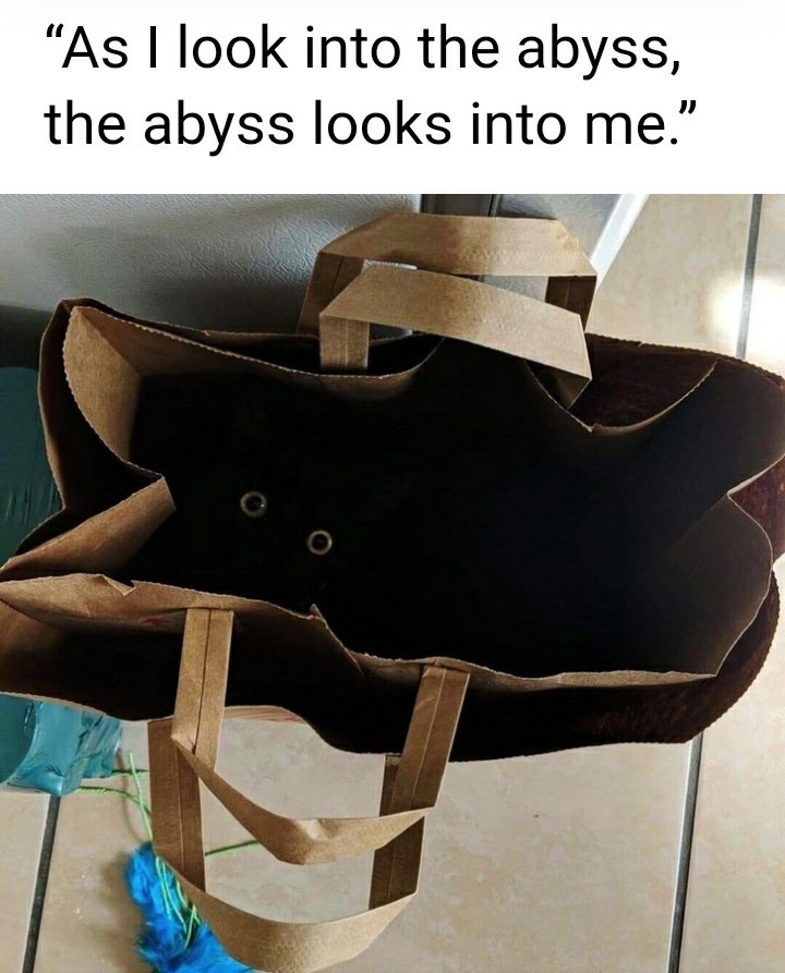 The abyss - meme