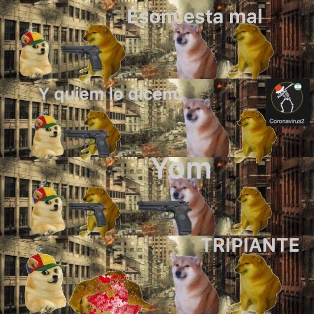TRIPIANTE - meme