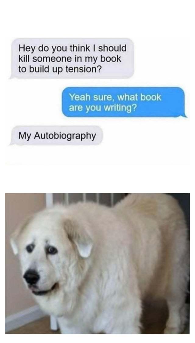 Interesting autobiography - meme