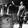 Lepitospirose Nazista Fodase