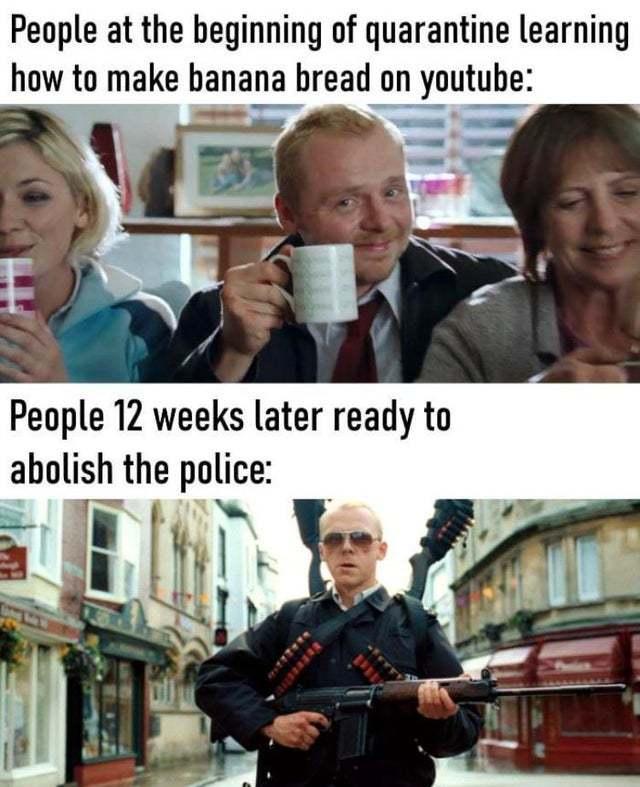 Quarantine Evolution - meme