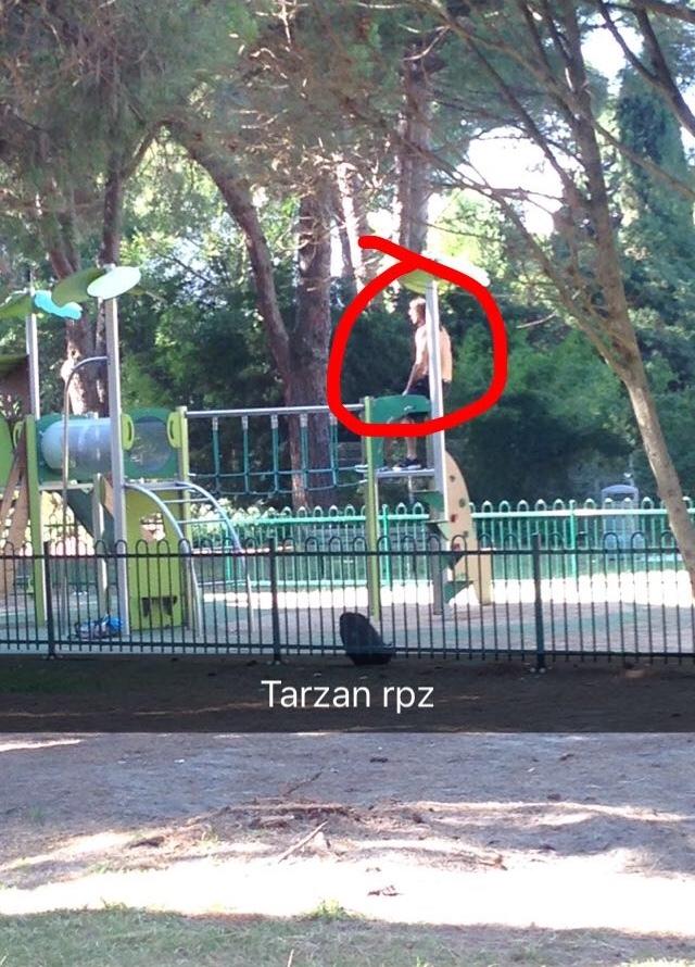 tarzan return au parc - meme