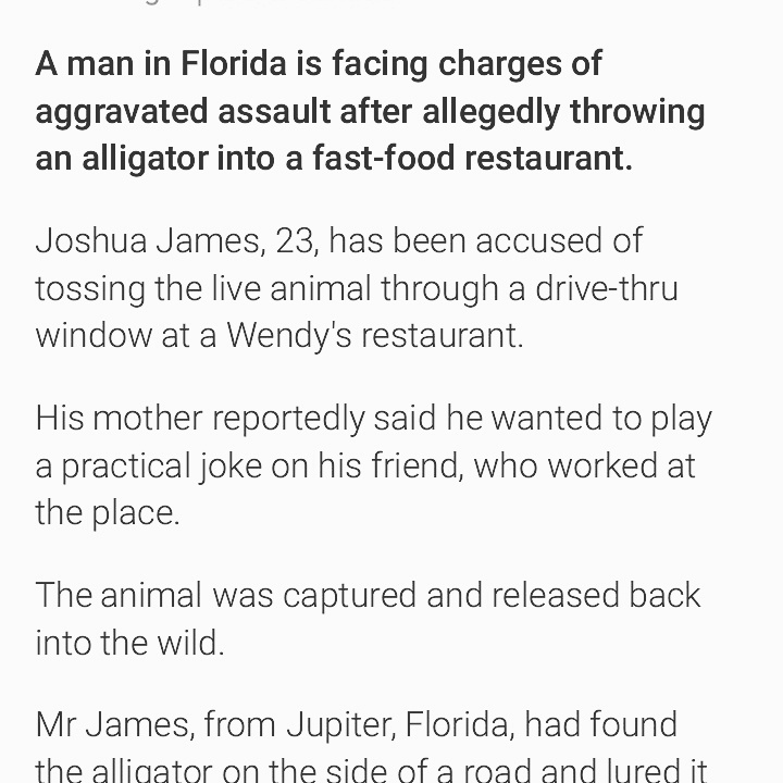 Florida Man Strikes Back - meme