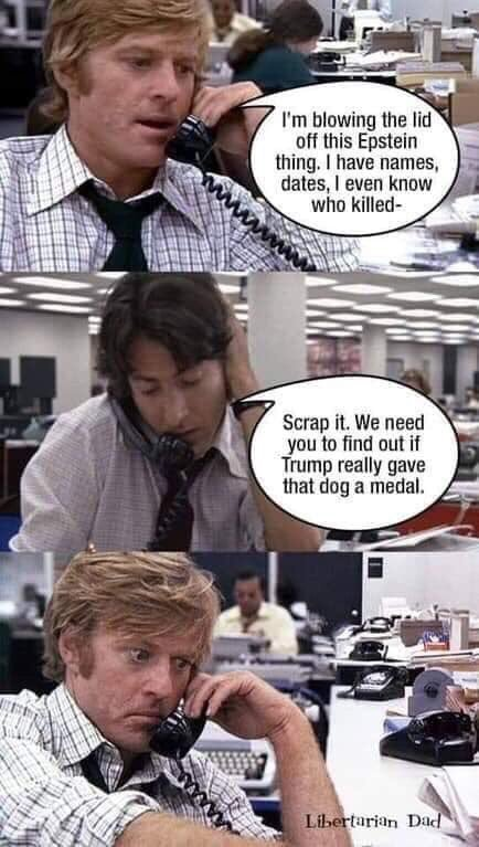 dongs in a scoop - meme