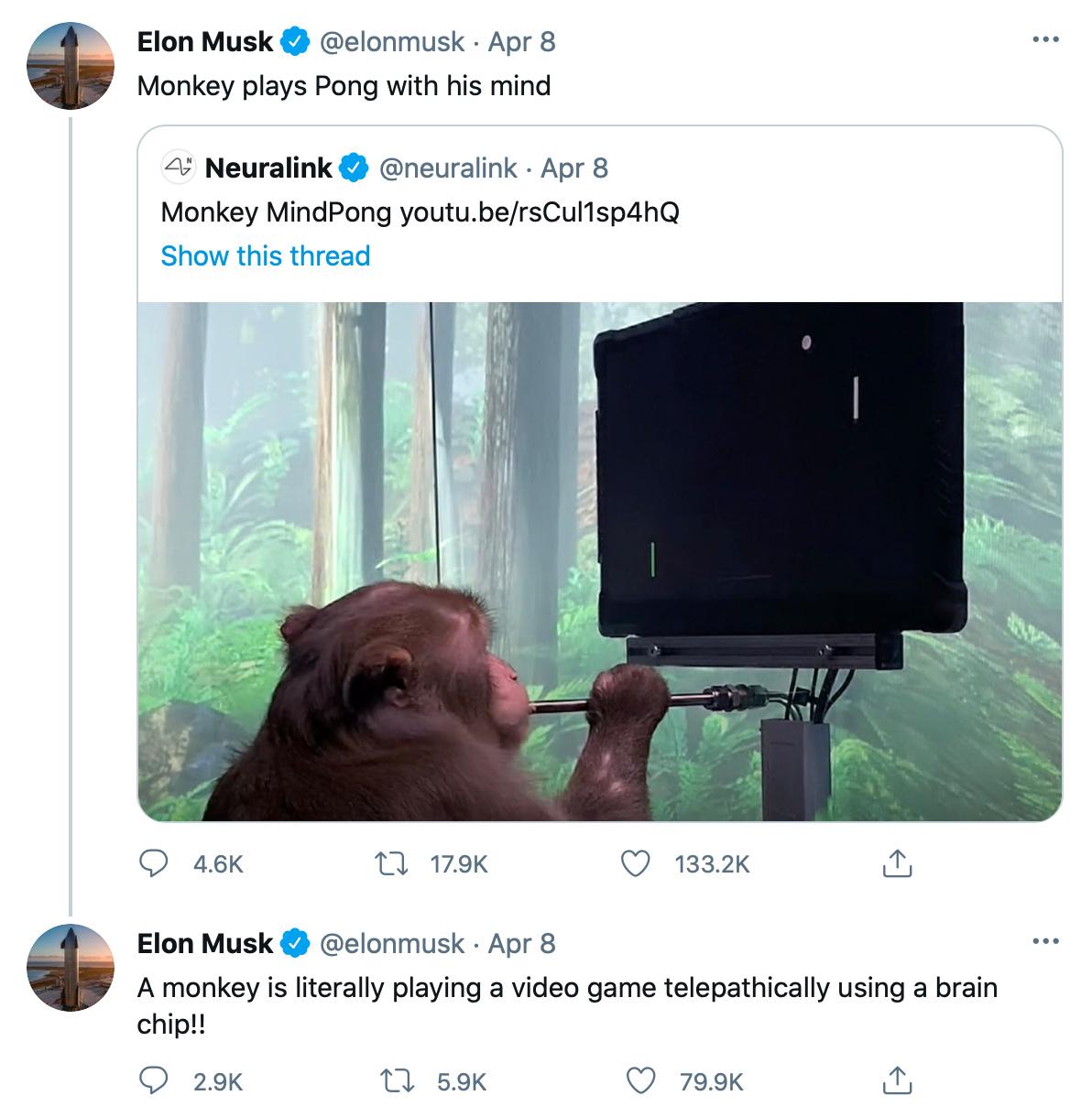 Asi Elon Musk controlara la mente de todos para dominar el mundo - meme