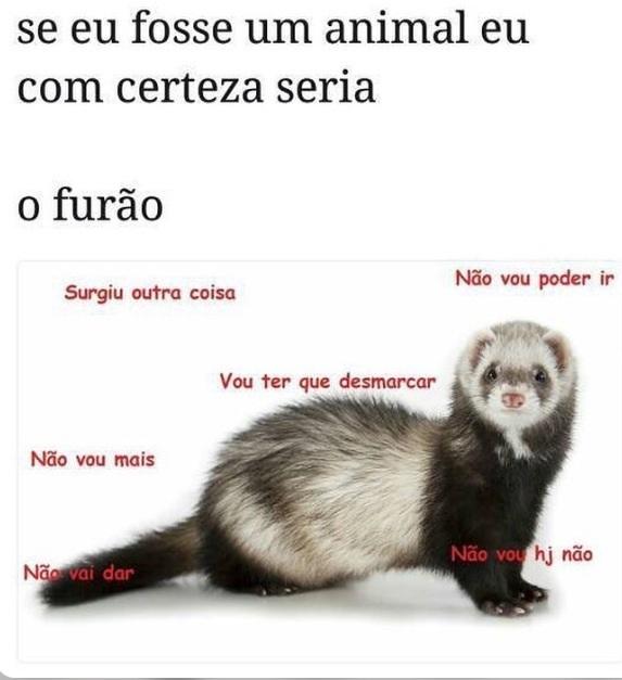 Piadas 10/10 pt 2 - meme