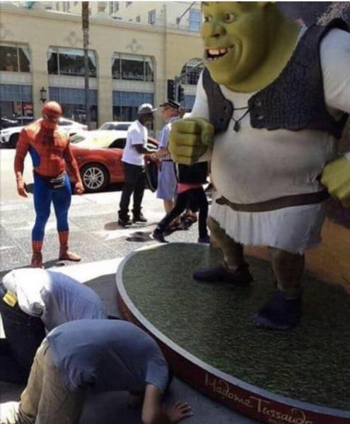 Maître Shrek ! - meme