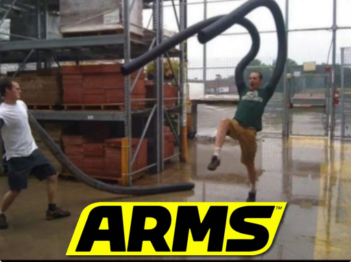 guys I found new Arms gameplay - meme