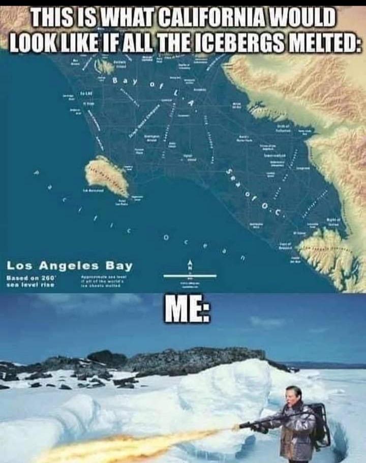shooting californians should be legal - meme