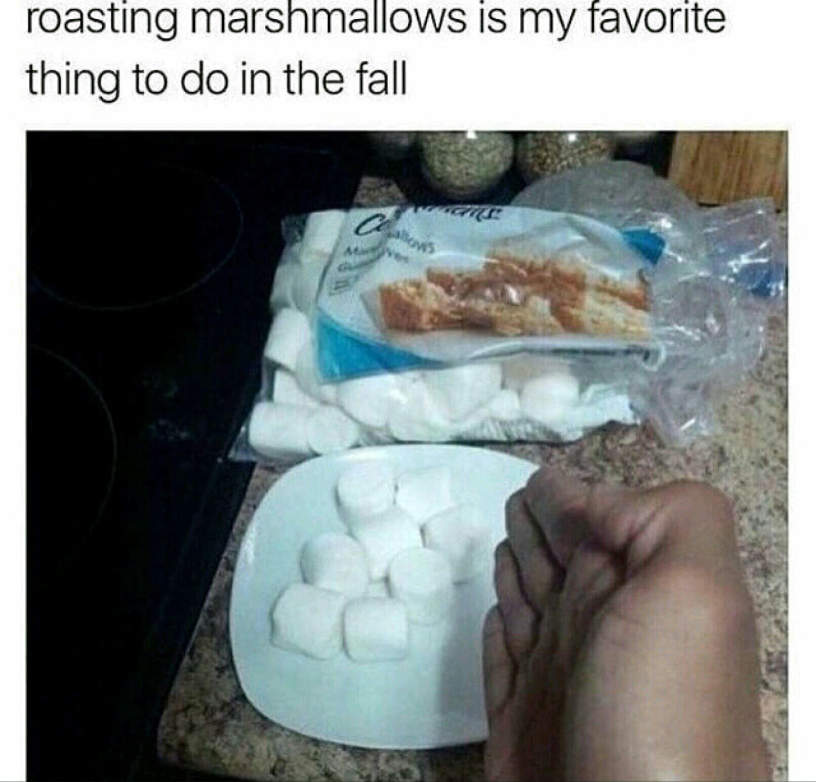 Boom roasted - meme