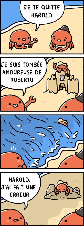 Crabe - meme