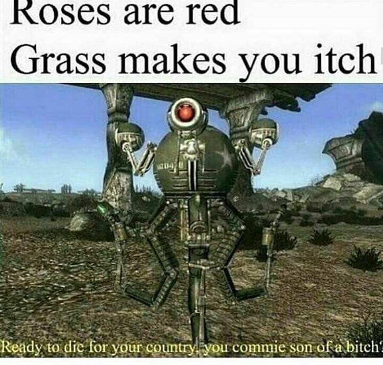 Man I love fallout - meme