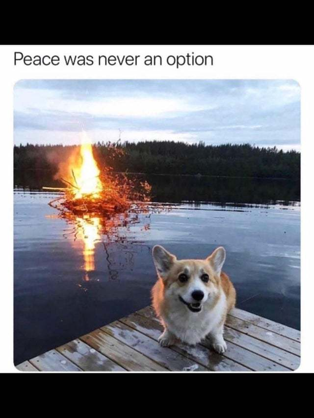 Peace was never an option - meme