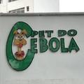 Título tem ebola