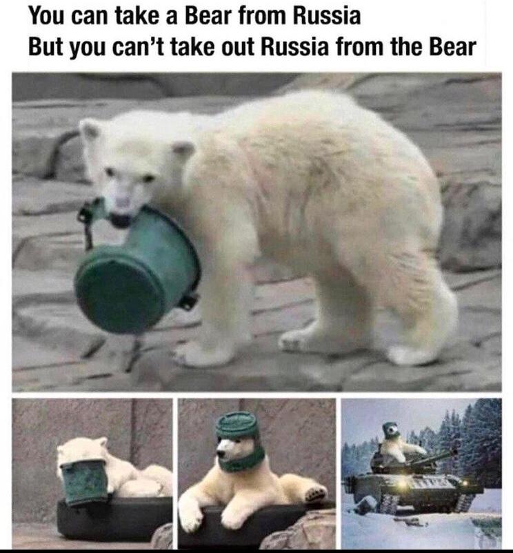 polar bear in a tank - meme