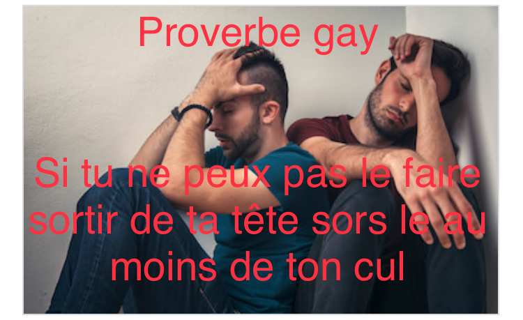 Proverbe gay - meme
